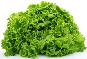 svježa zelena salata = zdravlje