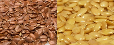 zlatne i smedje sjemenke lana