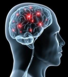 ginkgo za mozak i memoriju
