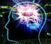 10 neistina i mitova o mozgu