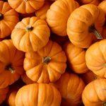 Pečena bundeva – kalorije i vitamini